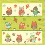 6 Eulen beim Drachensteigen - 6 Owls &  flying kites - 6 hiboux & cerf-volant