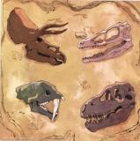 Dinosaurierschädel - Dinosaur skulls - Crâne de dinosaure