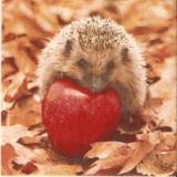 Blätter, 6 Äpfel & 1 Igel - Leaves, 6 apples & 1 hedgehog - Feuilles, 6 pommes & 1 hérisson