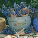 Kleine Lavendelsträuße - Small lavender bouquets - Petits bouquets de lavande