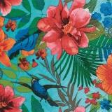 Kolibri an exotischen Blüten - Hummingbird at exotic flowers - Colibri aux fleurs exotiques