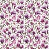 Magnolienblütenmeer - Sea of Magnolia flowers - Mer de fleurs de magnolias