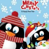 2 lustige Pinguine zur Winter-/Weihnachtszeit - 2 funny penguins at Winter/Christmas time - 2 pingouins gais à lheure dhiver et au temps de Noël