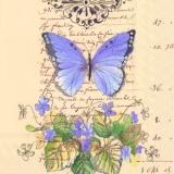 Schmetterling, Geschriebenes & Veilchen - Butterfly, Writting & Violet - Papillon, écrit & violette