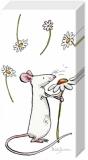 Gänseblümchen für Dich - Daisy for you - pâquerette pour Toi