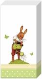 Hase, Gießkanne & Schmetterlinge - Rabbit, Watering can & butterflies - Lièvre, arrosoir & papillons