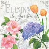 Hibiskus, Hortensie, Tulpe & Libelle - Hibiscus, hydrangea, tulip & dragonfly - Hibiscus, Hortensie, tulipe & libellule - Fleurs de JArdin