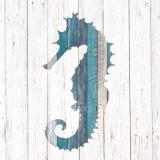 Seepferdchen & Bretter - Seahorse & wooden boards - Petits chevaux de lac &  planches de bois