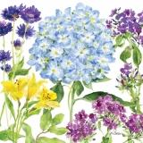 Blumengarten mit Hortensien - Flower garden with Hydrangea - Jardin de fleurs avec lHortensia
