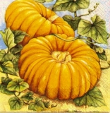2 Kürbisse - 2 Pumpkins