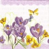 Notenblatt, Schmetterlinge & Krokus - Sheet of music, butterflies and crocus - Feuille de notes, Musique, papillons et crocus