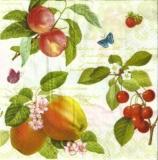 Äpfel, Pfirische, Kirschen, Erbeeren, Schmetterlinge & Geschriebenes - Apples, Peaches, Cherries, Strawberries, Butterflies & Writing - Pommes, pêches, cerises, fraises, papillons et écriture