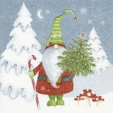 Nisser, Zwerg mit Weihnachtsbaum & schneebedeckten Tannen - Nisser, dwarf with Christmas tree & snow covered firs - Nain avec arbre de Noël avec et le sapin couvert de neige