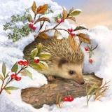 Igel im Schnee - Hedgehog in the snow - Hérisson dans la neige