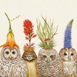 4 Eulen mit Blumen - 4 Owls with flowers - 4 Hiboux avec fleurs