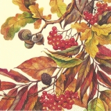 Eicheln, Beeren & buntes Laub - Acorns, berries & colorful foliage - Glands, baies et feuillage coloré