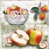 Apfelkorb - Apple basket - Panier de pomme