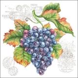 Dunkle & helle Weintrauben - Dark & light Grapes - Raisins sombres et légers