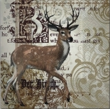 Majestetischer Hirsch, Junghirsch - Majestic deer, young stag - Cerf majestueux, jeune cerf