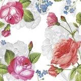 Rosen & Vergißmeinnicht - Roses & Forget-me-nots - Roses et oubliez-moi