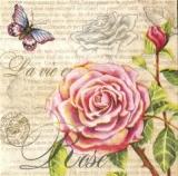 Rose, Schmetterling, Geschriebenes - Rose, Butterfly & Writing - Rose, papillon et écriture