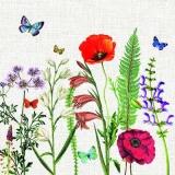Blumenwiese mit Mohn  & Schmetterlingen - Flower meadow with poppies & butterflies - Pré de fleurs avec des coquelicots et des papillons