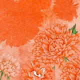 Orangefarbener Blumentraum - Orange floral dream - Rêve de fleur orange