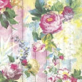 Wunderschöne Rosen vor Holzwand - Beautiful Roses in front of wooden wall - Belles Roses devant le mur en bois