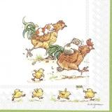 Meerschweinchen, Hahnenrennen & aufgeregte Küken - Guinea pigs, rooster race and excited chicks - Cochons dInde, course de coqs et poussins excités