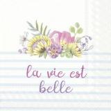 Zarte, pastellfarbene Blumen, Das Leben ist schön - Delicate, pastel-colored flowers, Life is beautiful - Délicates, fleurs aux couleurs pastel, la vie est belle
