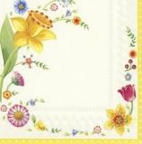 Bluhmenrahmen mit Narzissen & Tulpen - Floral frame with daffodils and tulips - Cadre floral avec des jonquilles et des tulipes