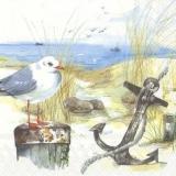 Anker & 3 Möwen am Strand - Anchor & 3 seagulls at the beach - Ancre et 3 mouettes à la plage