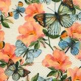 Schmetterlingsgarten - Garden of butterflies -  Jardin de papillons