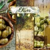 Mein Olivengarten - My Olive garden - Mon jardin doliviers