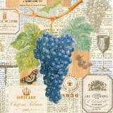 Dunkle Weintrauben, Weinetiketten, Weinkelch, Schmetterling, Korkenzieher......- Dark grapes, wine labels, wine goblet, butterfly, corkscrew ...... - Raisins sombres, étiquettes de vin, gobelet de vin