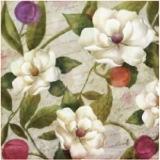 Blüten & Knospen auf Brief - Blossoms & buds on letter - Fleurs et bourgeons sur lettre