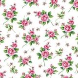 Kleine Röschen, Rosen - Little roses - Petites roses