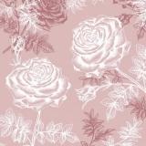 Schimmernde Rosen, rose - Shining roses, rose - Roses brillantes, rose