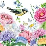 2 Meisen & Schmetterlinge im Blumengarten - 2 bluetits and butterflies in the flower garden - 2 mésanges et papillons dans le jardin de fleurs