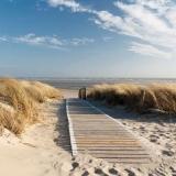 Weg zum Strand - Way to the beach - Chemin de la plage