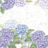 Hortensienverzauberung - hydrangeas enchantment - enchantement hortensias
