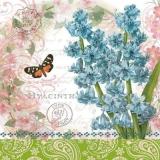 Schmetterling & Hyazinthe - Butterfly & Hyacinth - Papillon et jacinthe