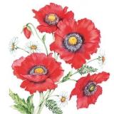 Bezaubernde Mohnblumen - Glamorous poppies - Coquelicots glamour