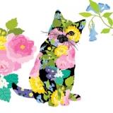 Blumen-Katze, Kätzchen - Flower cat, kitten - Chat de fleur, chaton