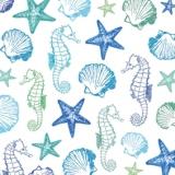 Seepferdchen, Muscheln & Seesterne - Seahorses, shells & starfish - Hippocampes, coquillages et étoiles de mer