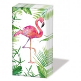 tropischer Flamingo - Tropical Flamingo - Flamant tropical