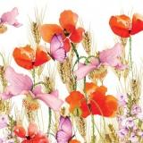 Schmetterlinge & Mohnblumen im Kornfeld - Butterflies & poppies in the cornfield - Papillons et coquelicots dans le champ de maïs
