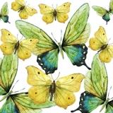 Schmetterlinge gelb &grünlichblau - Butterflies yellow, greenish blue - Papillons jaunes et bleu verdâtre