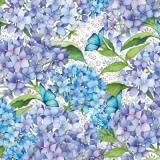 blaue Hortensien - blue hydrangeas - hortensias bleus