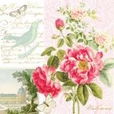 Rosen aus dem Schlosspark, Vogel & 2 Schmetterlinge - Roses from the castle park, bird & 2 butterflies - Roses du parc du château, oiseau et 2 papillons